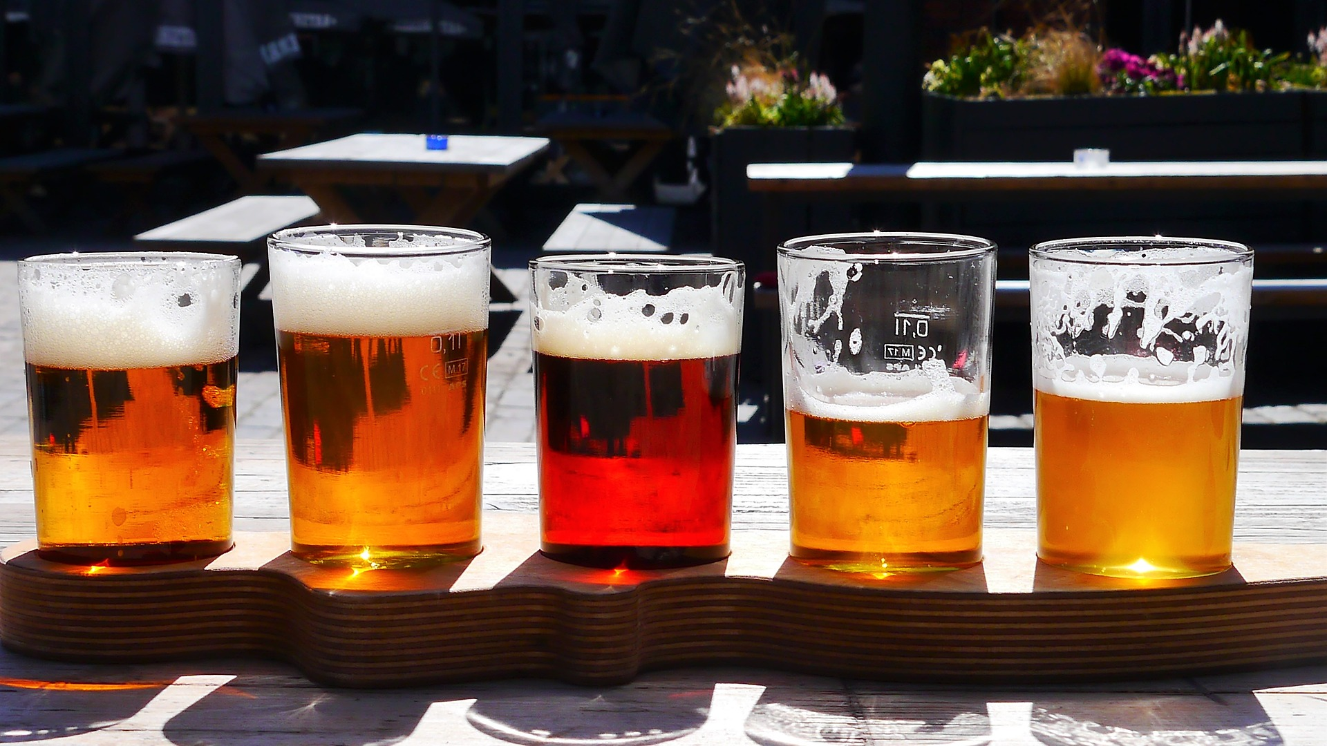 rodzaje piwa