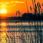 Jezioro będzie czystsze! Zachęcamy do wzięcia udziału w oficjalnym sprzątaniu!