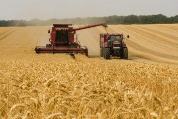 sprzęt rolniczy - kombajn