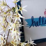 Wiosna nadchodzi - czeka konkurs plastyczny dla uczniów