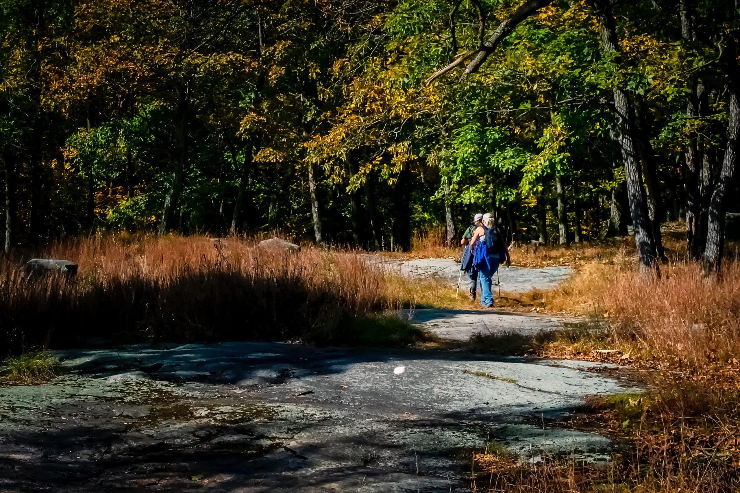 trasa nordic walking